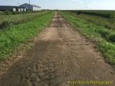 Ed Winkel Trail